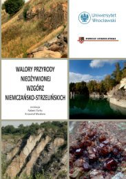walory przyrody nieożywionej wzgórz niemczańsko ... - Robert Tarka