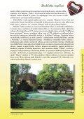 Stubičke Toplice - zagorjepublic - Page 3