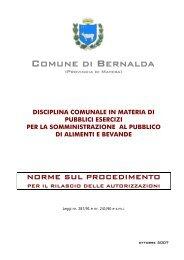 Disciplina comunale in materia di pubblici esercizi per la ...