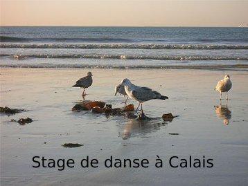 Présentation du stage de Calais.