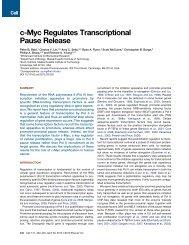 c-Myc Regulates Transcriptional Pause Release