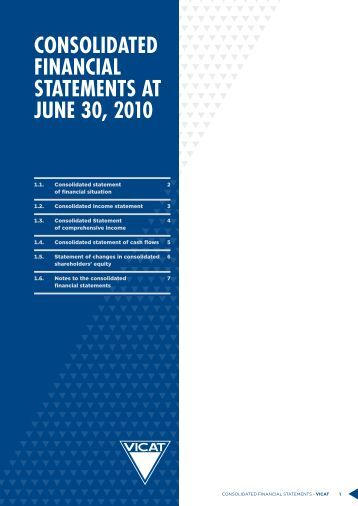 consolidated financial statements at june 30, 2010 - Vicat