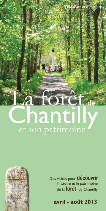 La forêt - Ville de Chantilly