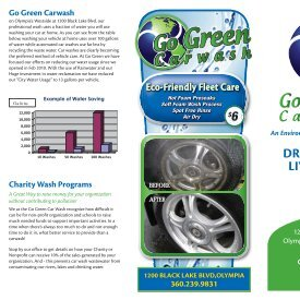 DRIVE CLEAN, LIVE GREEN! - Go Green Car Wash