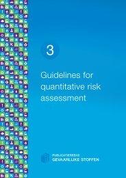 Guidelines for quantitative risk assessment - Publicatiereeks ...
