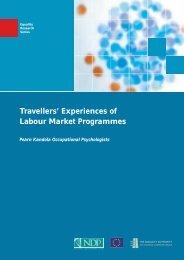 Travellers' Experiences of Labour Market Programmes - European ...