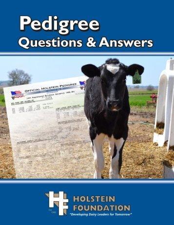 Download this workbook - the Holstein Foundation