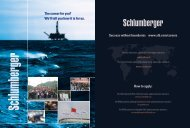 The career for you? We'll tell you how it is for us ... - Schlumberger