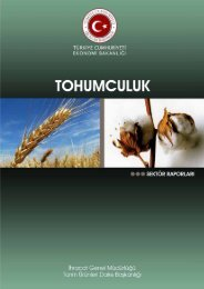 Ekonomi-Bakanligi-2012-Tohumculuk-Raporu