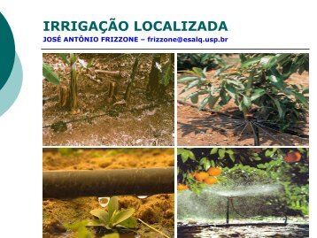 IRRIGAÇÃO LOCALIZADA - LEB/ESALQ/USP