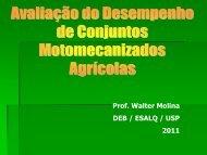 Prof. Walter Molina DEB / ESALQ / USP 2011 - LEB