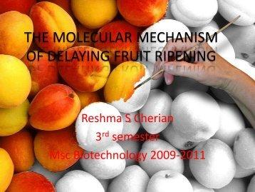 the molecular mechanism of delaying fruit ripening - (CUSAT ...