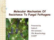 Molecular Mechanism Of Resistance To Fungal Pathogens