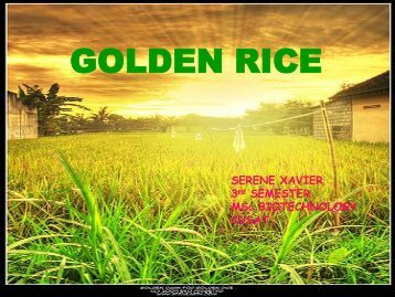 GOLDEN RICE - (CUSAT) – Plant Biotechnology laboratory
