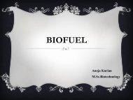 BIOFUEL - (CUSAT) – Plant Biotechnology laboratory