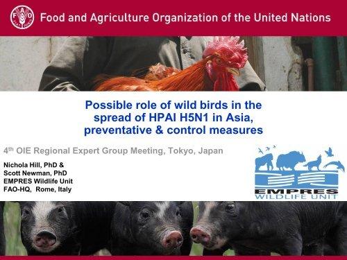Wild birds & spread H5N1 Asia_OIE meeting - OIE Asia-Pacific
