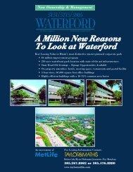 5000 Flyer - Asset Marketing
