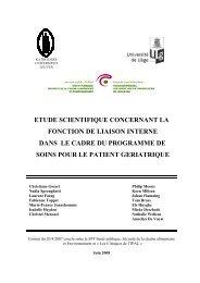 Rapport liaison interne Fr 05.09.08cc - Belgium