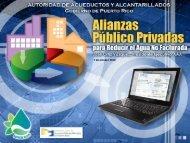 7 de octubre 2010 - Autoridad para las Alianzas Público-Privadas ...