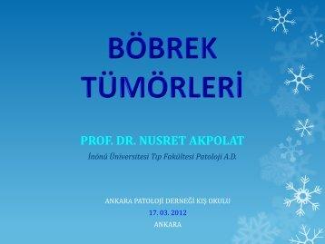 BÖBREK TÜMÖRLERİ - Ankara Patoloji Derneği