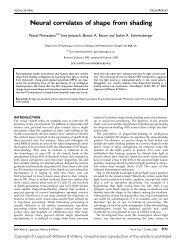 Neural correlates of shape from shading - Pascal Mamassian