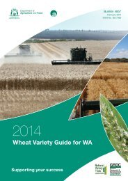 WA-wheat-variety-guide-2014-for-web1
