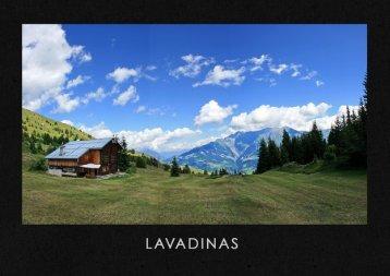LAVADINAS