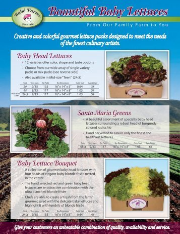 Baby Head Lettuces Baby Lettuce Bouquet Santa ... - Babe Farms