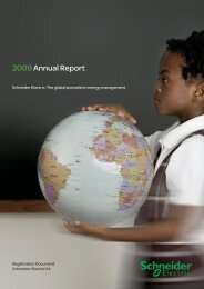 2009 Annual Report - Schneider Electric