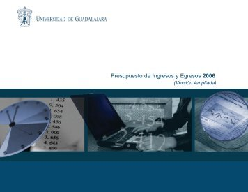 Presupuesto ampliado 2006 (pdf) - Consejo de Rectores