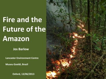 View slides - Oxford Centre for Tropical Forests