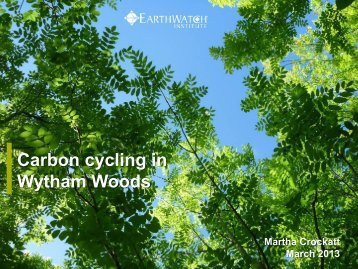 Carbon cycling in Wytham Woods - Oxford Centre for Tropical Forests