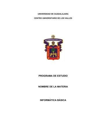 programa de estudio nombre de la materia informática básica