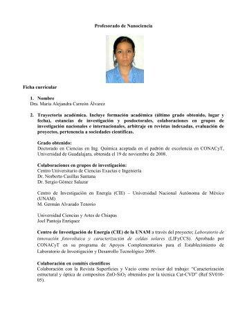 Profesorado de Nanociencia Ficha curricular 1. Nombre Dra. María ...