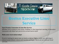 Boston Executive Limo Bus