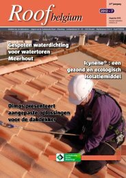 platte daken - Bouwmagazines