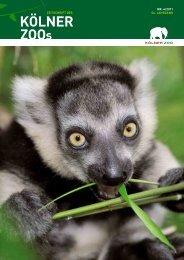Nr. 4/2011, 54. Jahrgang (PDF) - Kölner Zoo