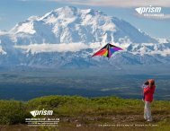 catalog - Prism Kite Technology