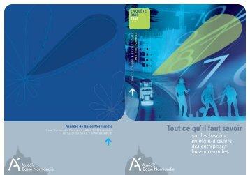Enquête BMO 2008 - Assédic Basse-Normandie - Informetiers