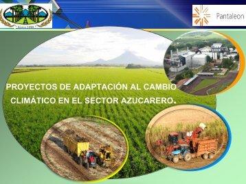Ingenios Azucareros - magfor