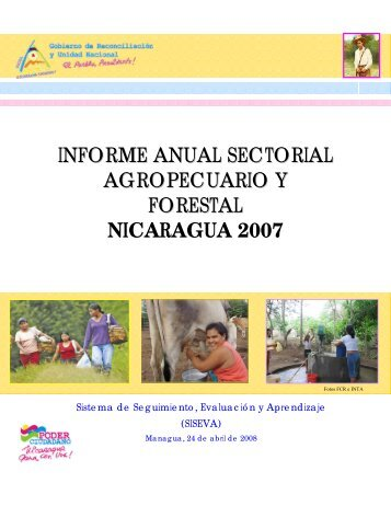 Informe Sectorial 2007 - magfor