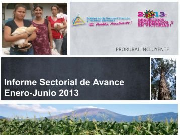 avance sectorial: enero - junio 2013 - magfor