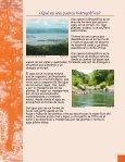 POSAF.Manual para el establecimiento de SAF - magfor - Page 7