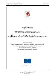 Regionalna Strategia Innowacyjności w ... - Portal Innowacji