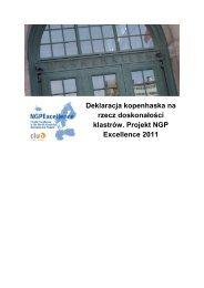 Deklaracja kopenhaska na rzecz doskonałości klastrów. Projekt ...