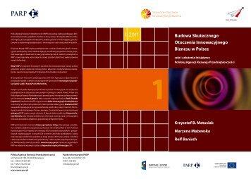Budowa Skutecznego Otoczenia Innowacyjnego Biznesu w Polsce