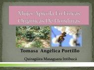 APICULTURA ORGANICA - Pymerural
