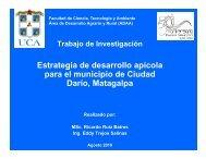 Estrategia de desarrollo apícola g p para el municipio ... - Pymerural