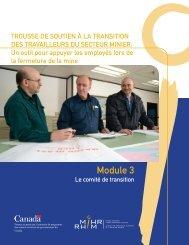 Module 3 : Comité de transition - MiHR