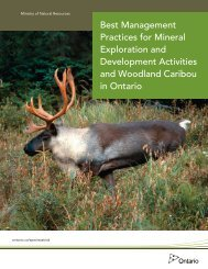 Ministry of Natural Resources Publication - Ontario Prospector's ...